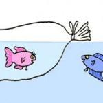 Petits poissons !